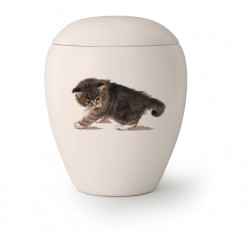 Katten urn KT-05