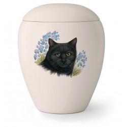 Katten urn KT-13